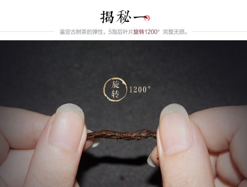金饼茶王03.jpg