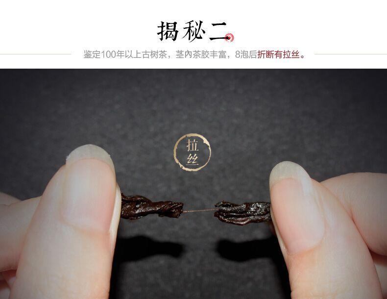 金饼茶王04.jpg