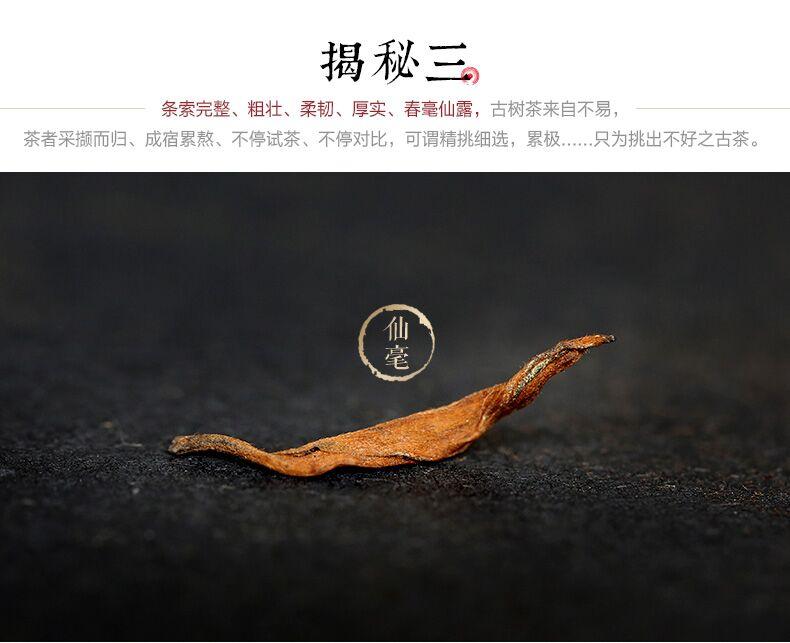 金饼茶王05.jpg