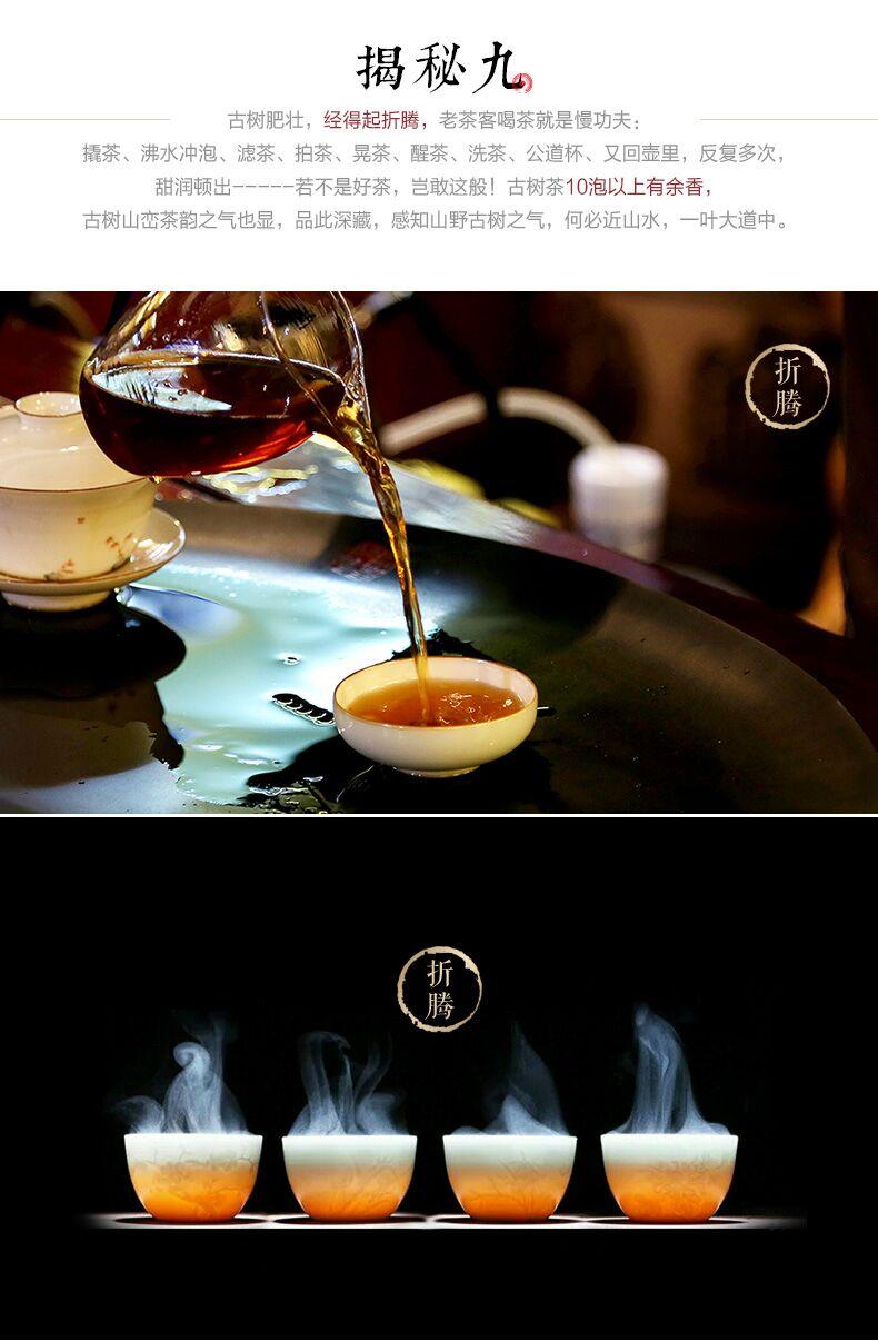 金饼茶王11.jpg